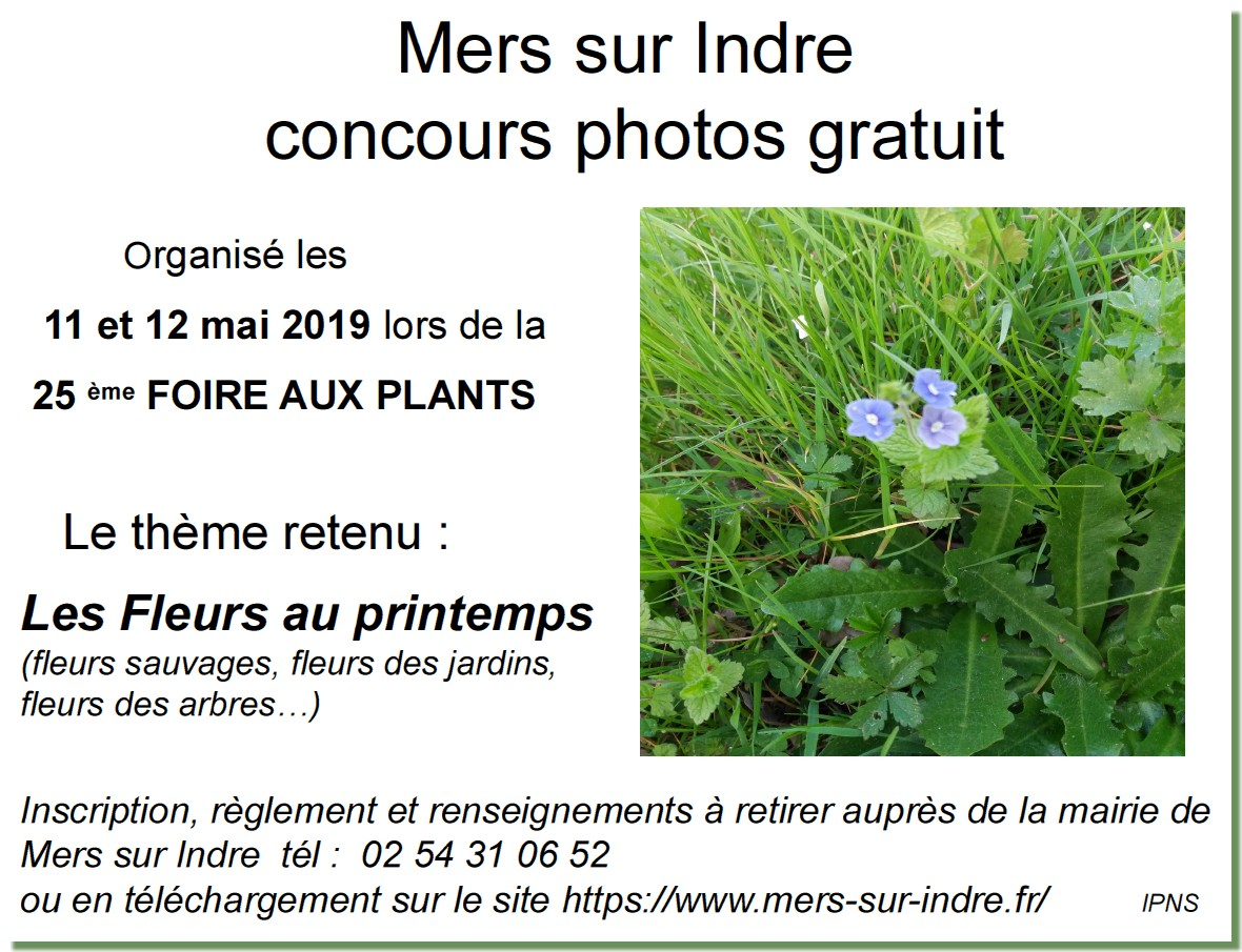 2019 concours photo